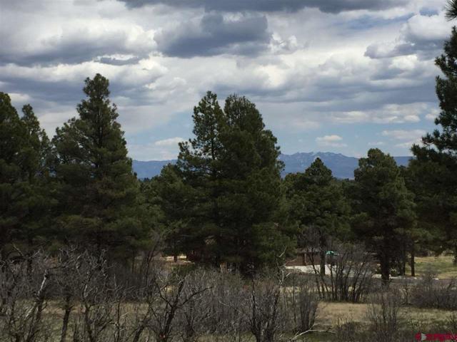 285 Powder Horn Drive, Pagosa Springs, CO 81147 (MLS #747459) :: CapRock Real Estate, LLC
