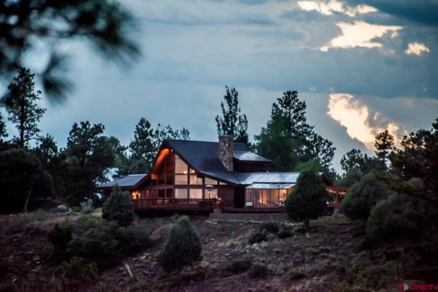 311 Crockett, Pagosa Springs, CO 81147 (MLS #747710) :: CapRock Real Estate, LLC