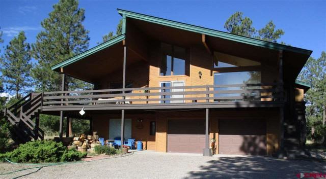 139 S Squaw Canyon Place, Pagosa Springs, CO 81147 (MLS #747843) :: Durango Home Sales
