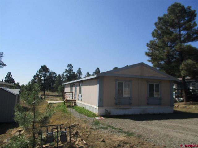 114 Surrey Drive, Pagosa Springs, CO 81147 (MLS #748251) :: CapRock Real Estate, LLC
