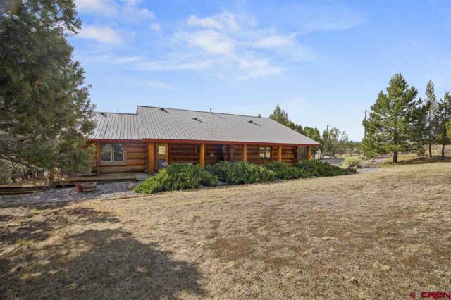 692 Sundance Circle, Durango, CO 81303 (MLS #748282) :: Durango Mountain Realty