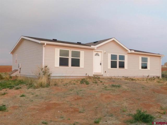25164 Road 18, Pleasant View, CO 81331 (MLS #748396) :: Durango Home Sales
