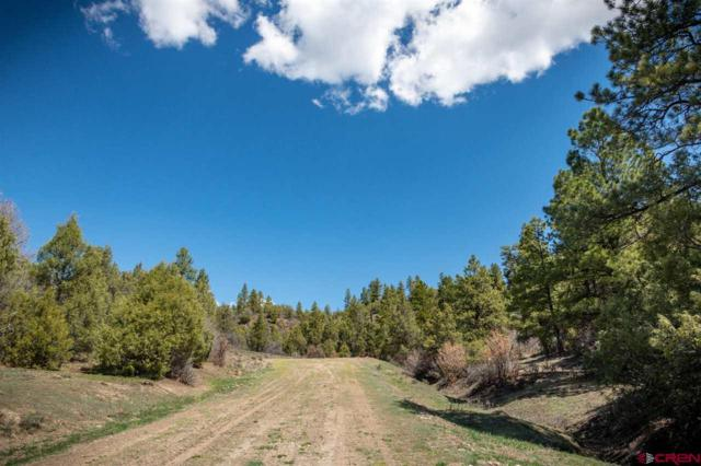 115 Olympic Court, Pagosa Springs, CO 81147 (MLS #748514) :: The Howe Group   Keller Williams Colorado West Realty