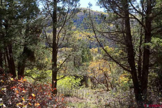 TBD Road 40.4, Dolores, CO 81323 (MLS #748585) :: CapRock Real Estate, LLC