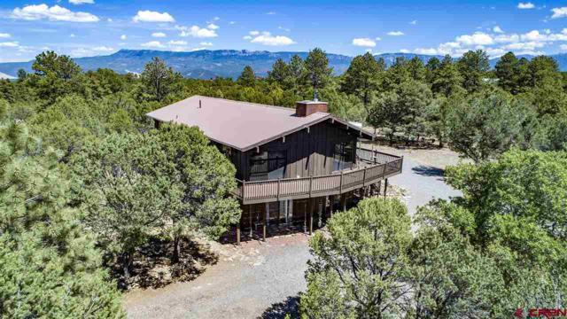 112 Lupine Lane, Ridgway, CO 81432 (MLS #748587) :: Durango Home Sales