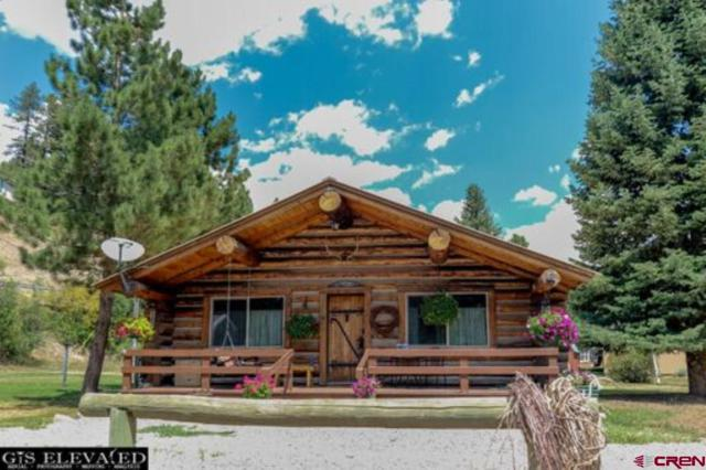 61 High Trail Drive, Durango, CO 81301 (MLS #748806) :: Durango Mountain Realty