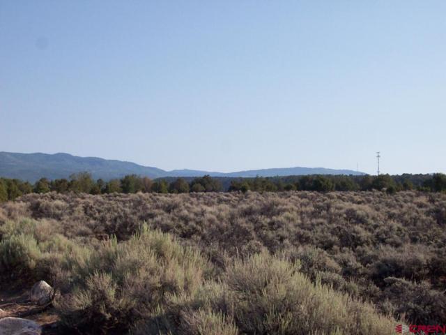 TBD Cactus Park Road, Cedaredge, CO 81413 (MLS #748829) :: The Dawn Howe Group | Keller Williams Colorado West Realty