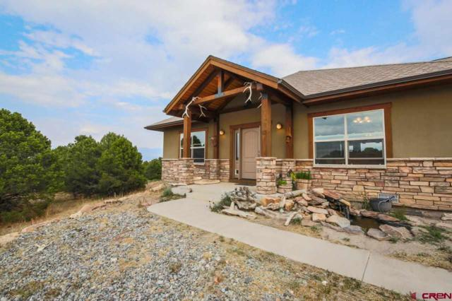 1724 Ponderosa, Ridgway, CO 81432 (MLS #748986) :: CapRock Real Estate, LLC