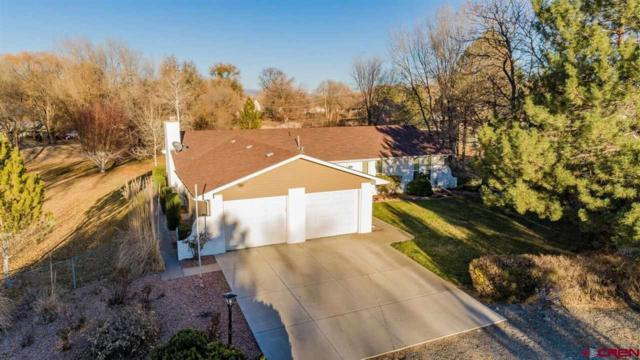 500 Willow Wood Lane, Delta, CO 81416 (MLS #749079) :: CapRock Real Estate, LLC
