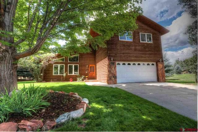 101 Long Hollow Lane, Durango, CO 81301 (MLS #749090) :: Durango Mountain Realty