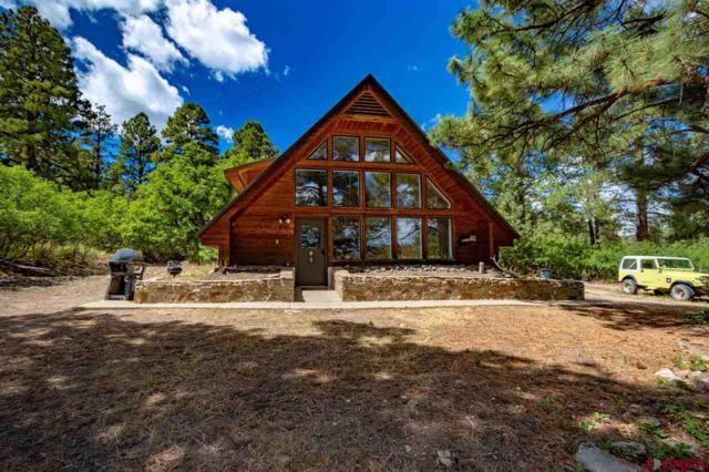 511 Blue Jay Circle, Pagosa Springs, CO 81147 (MLS #749186) :: CapRock Real Estate, LLC