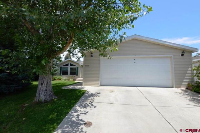 1124 N Colorado Circle, Gunnison, CO 81230 (MLS #749354) :: Durango Home Sales