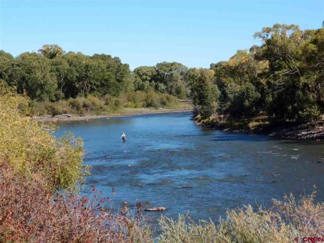 1966 River Island Drive, South Fork, CO 81101 (MLS #749543) :: CapRock Real Estate, LLC