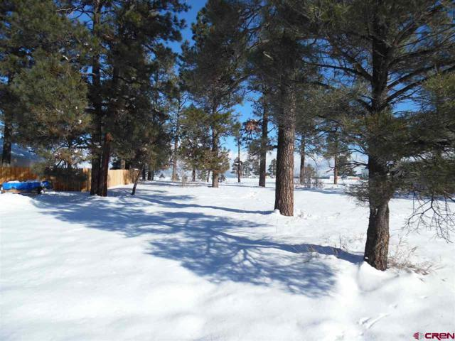 81 W Golf Place, Pagosa Springs, CO 81147 (MLS #749685) :: Durango Home Sales