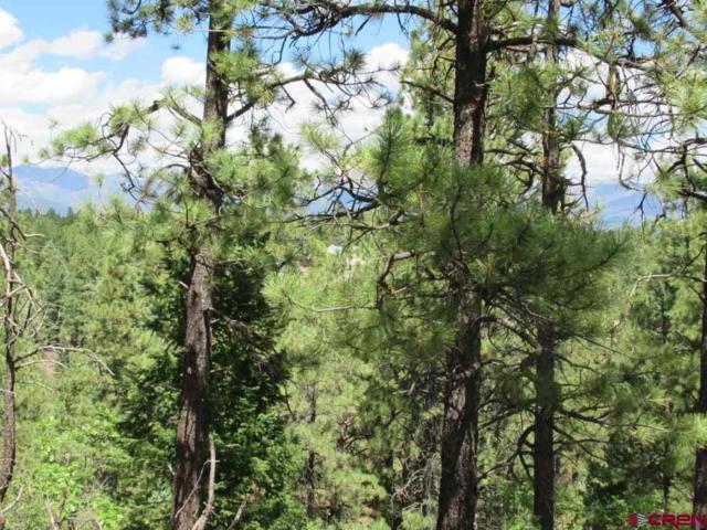 428 Majestic Drive, Pagosa Springs, CO 81147 (MLS #749790) :: Durango Home Sales