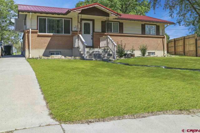 313 Pine View Drive, Montrose, CO 81401 (MLS #749970) :: CapRock Real Estate, LLC