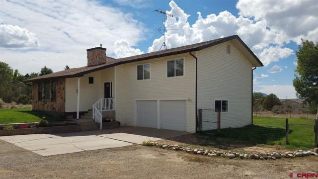 11603 27.3 Road, Dolores, CO 81323 (MLS #749996) :: CapRock Real Estate, LLC