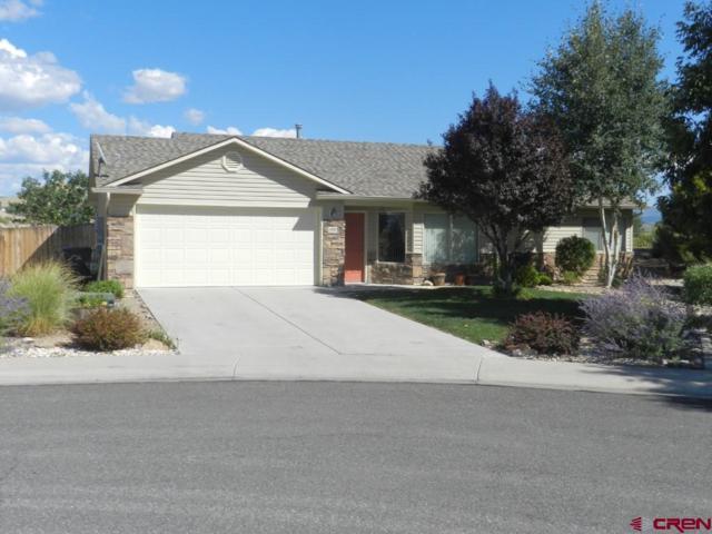 1100 Weminuche Avenue, Montrose, CO 81401 (MLS #750037) :: CapRock Real Estate, LLC