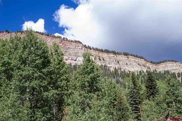 416 Lakewood Drive, Durango, CO 81301 (MLS #750064) :: Durango Mountain Realty