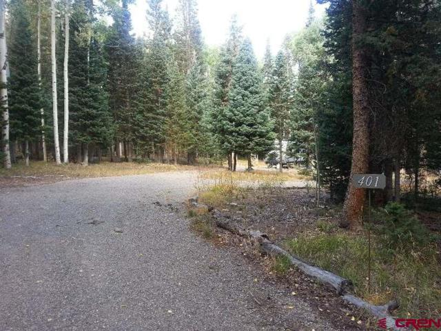 401 Balsam Road, Cimarron, CO 81220 (MLS #750195) :: Durango Home Sales