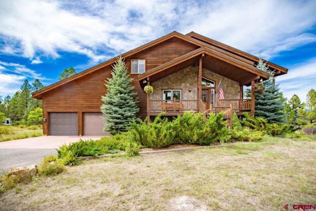 369 Saddlehorn Place, Pagosa Springs, CO 81147 (MLS #750198) :: Durango Home Sales