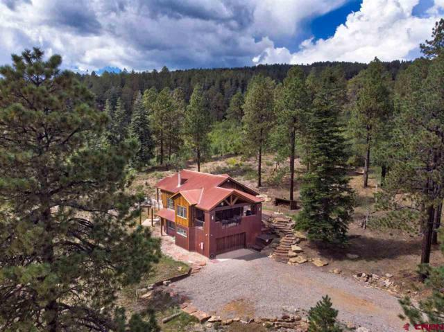115 Saddle Trail, Durango, CO 81301 (MLS #750338) :: Durango Mountain Realty