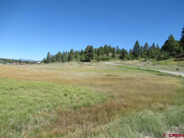 108 Saddlehorn Place, Pagosa Springs, CO 81147 (MLS #750567) :: Durango Home Sales