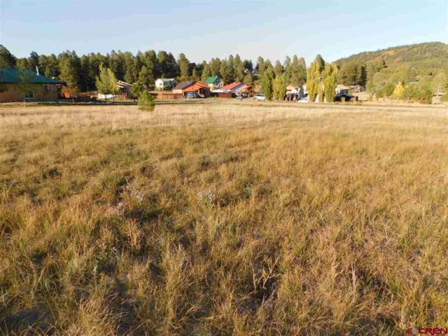 15 Flintlock Place, Pagosa Springs, CO 81147 (MLS #750590) :: CapRock Real Estate, LLC