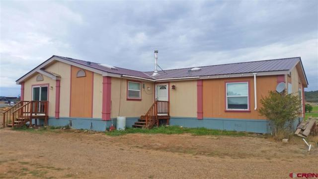 173 Hogs Are Beautiful Trail, Bayfield, CO 81122 (MLS #750740) :: CapRock Real Estate, LLC