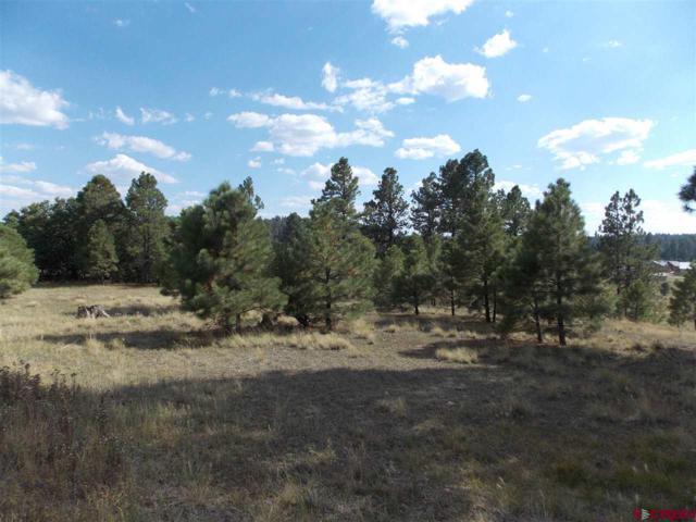 146 Monte Vista Drive, Pagosa Springs, CO 81147 (MLS #750882) :: Durango Home Sales