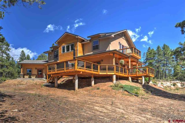 51 West Fork Road, Durango, CO 81303 (MLS #750948) :: Durango Mountain Realty