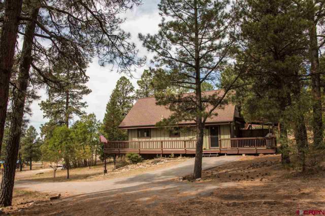 43 N Driver Court, Pagosa Springs, CO 81147 (MLS #751157) :: CapRock Real Estate, LLC