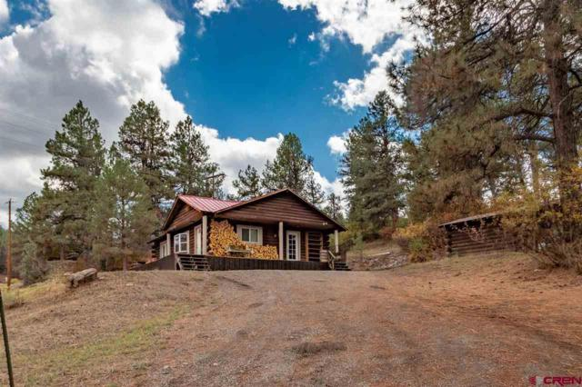 203 Hurt Drive, Pagosa Springs, CO 81147 (MLS #751302) :: CapRock Real Estate, LLC