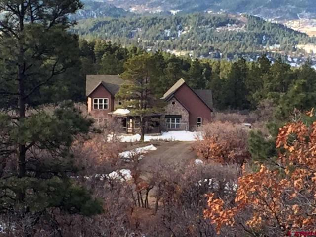 545 Anasazi Drive, Pagosa Springs, CO 81128 (MLS #751565) :: Durango Home Sales