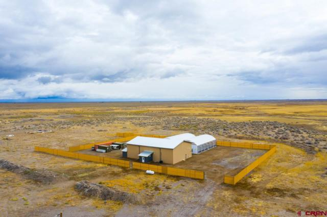 48256 County Road T, Saguache, CO 81149 (MLS #752004) :: Keller Williams CO West / Mountain Coast Group