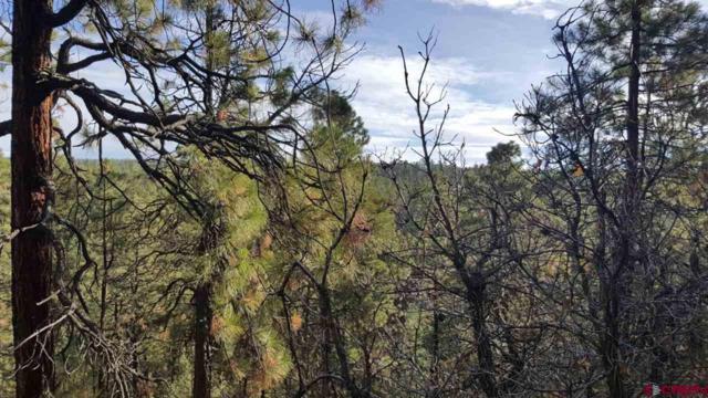 2617 Crooked Road, Pagosa Springs, CO 81147 (MLS #752309) :: Durango Home Sales