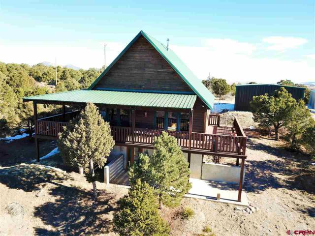 258 Cameron Pass Road, South Fork, CO 81154 (MLS #752482) :: Durango Home Sales