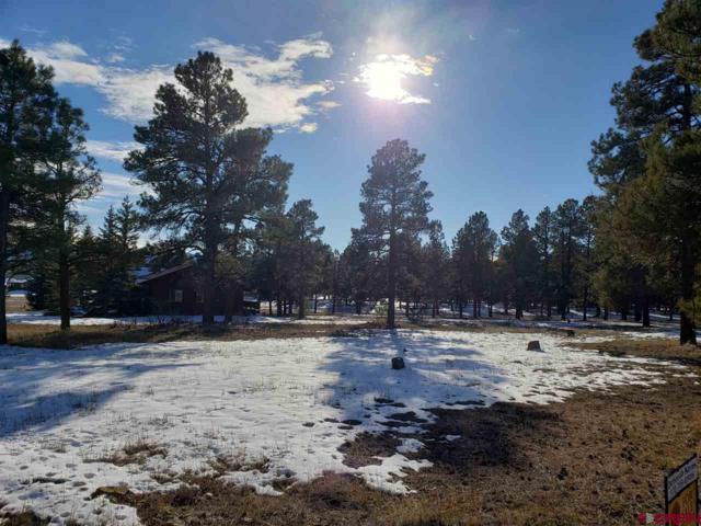86 Hackamore, Pagosa Springs, CO 81147 (MLS #752746) :: Durango Home Sales