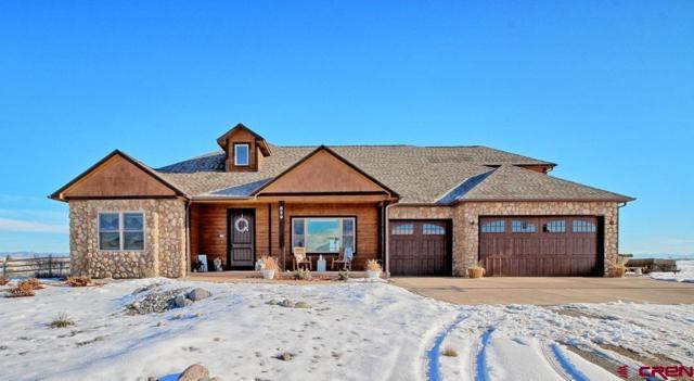 859 Slickrock Drive, Mack, CO 81525 (MLS #753224) :: CapRock Real Estate, LLC