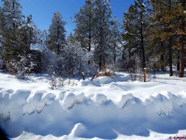 415 Oakbrush Street, Pagosa Springs, CO 81147 (MLS #753405) :: Durango Home Sales