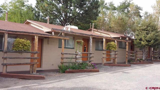 810 N Grand Mesa Drive, Cedaredge, CO 81413 (MLS #753640) :: Durango Home Sales
