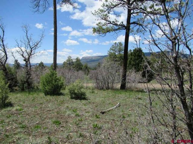 2612 Bull Elk Place, Pagosa Springs, CO 81147 (MLS #753662) :: The Dawn Howe Group | Keller Williams Colorado West Realty