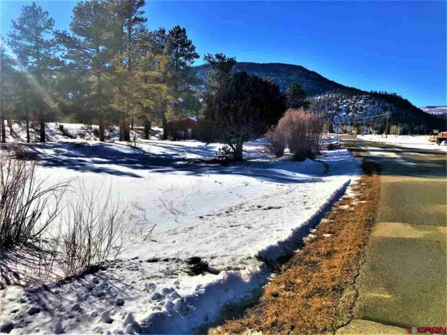 100 Ponderosa Drive, South Fork, CO 81154 (MLS #753690) :: Durango Home Sales