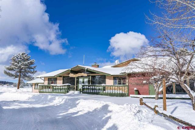 117 Ponderosa Drive, Ridgway, CO 81432 (MLS #753722) :: The Dawn Howe Group | Keller Williams Colorado West Realty