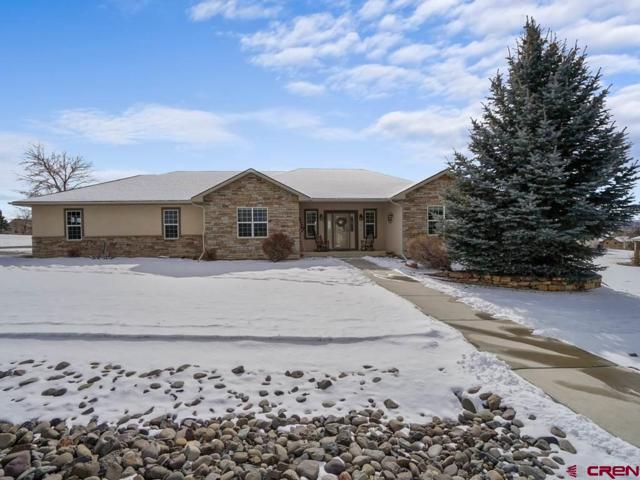 3201 Monte Vista Circle, Montrose, CO 81401 (MLS #753832) :: Durango Home Sales