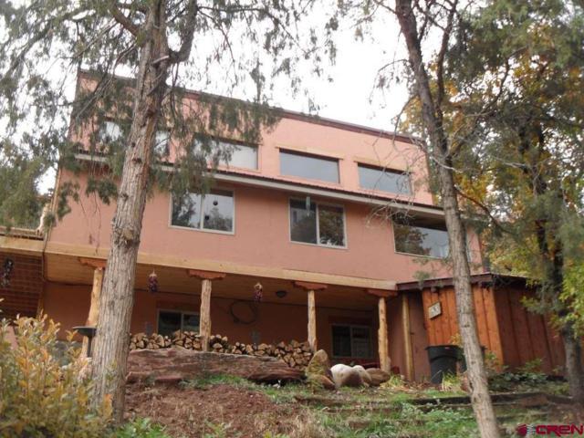5063 Cr 203, Durango, CO 81301 (MLS #753865) :: Durango Mountain Realty