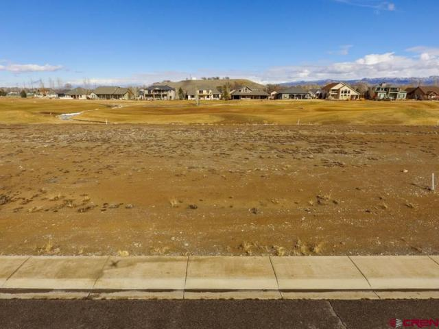 905 Courthouse Peak Lane, Montrose, CO 81403 (MLS #754047) :: Durango Home Sales