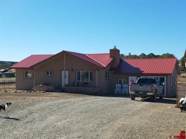 75748 W Black Canyon Road, Crawford, CO 81415 (MLS #754246) :: Durango Home Sales