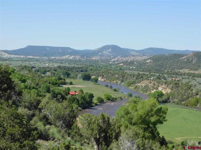 818 N Rainbow Road, Durango, CO 81303 (MLS #754604) :: Durango Mountain Realty
