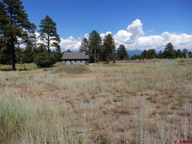 X Papoose Court, Pagosa Springs, CO 81147 (MLS #754657) :: The Dawn Howe Group | Keller Williams Colorado West Realty
